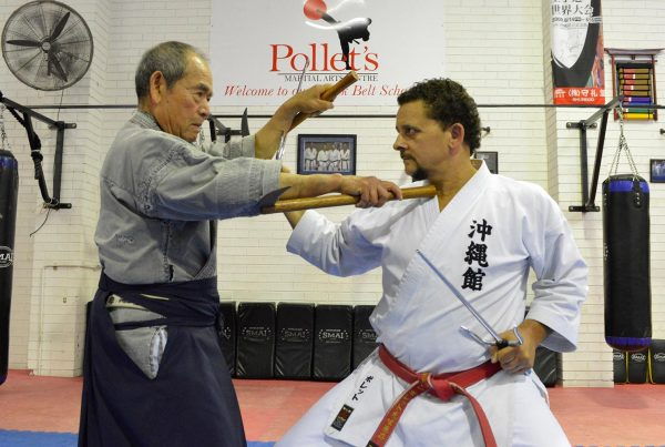 Self Defence Pollets Martial Arts